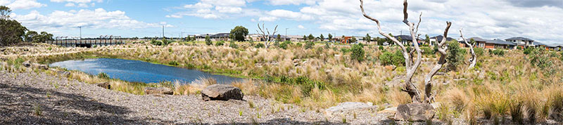 Unique wetland project wins Victorian Landscape of the Year
